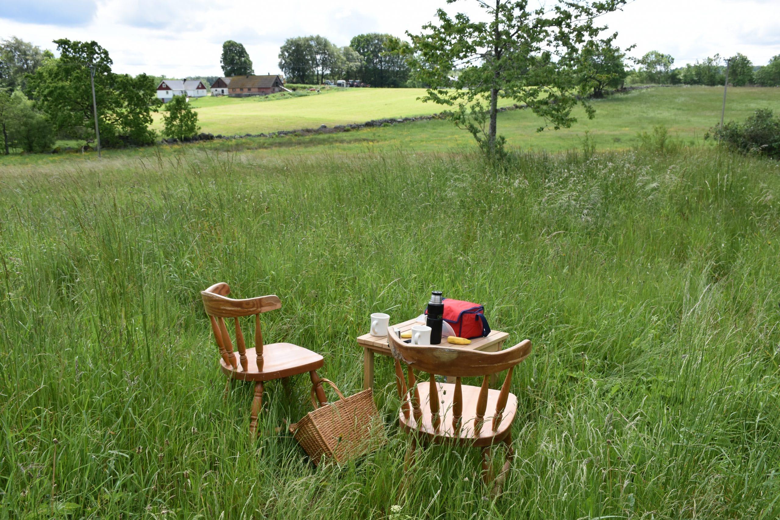 sophämtning - picknickkorg